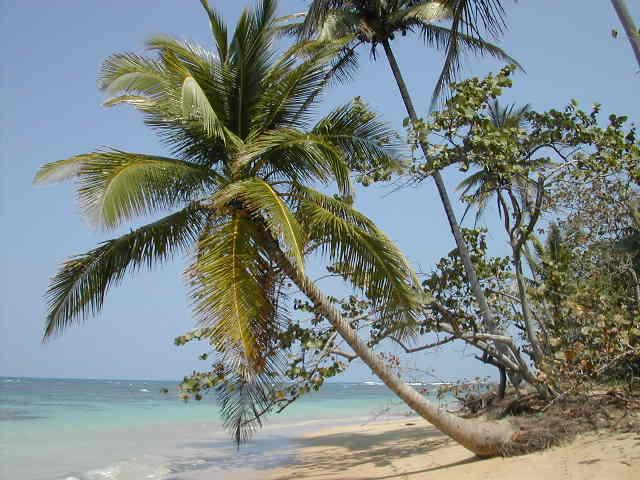 Dominikanische Republik Strand in Las Terrenas
